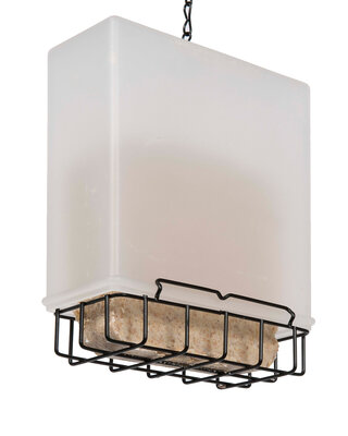 Starling Resistant Suet Feeder
