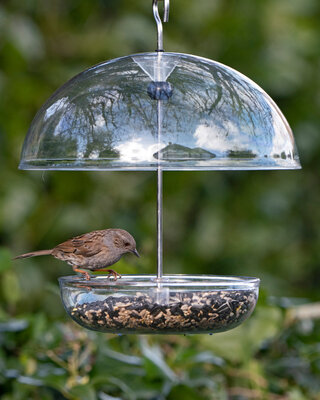 I Love Robins® Feeder