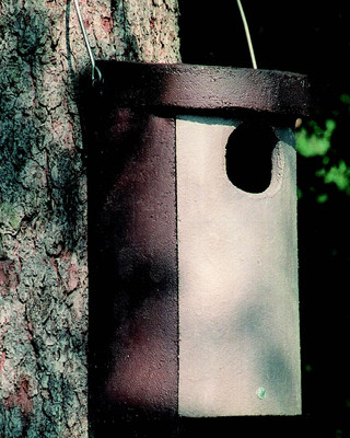 Owl Box No. 4