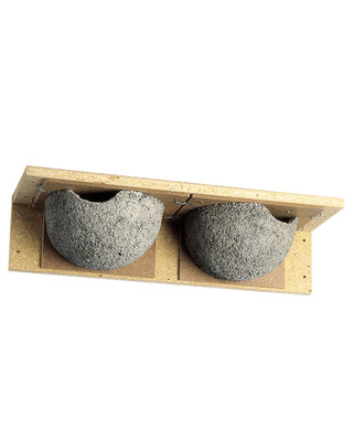 Single & Double House Martin Nests