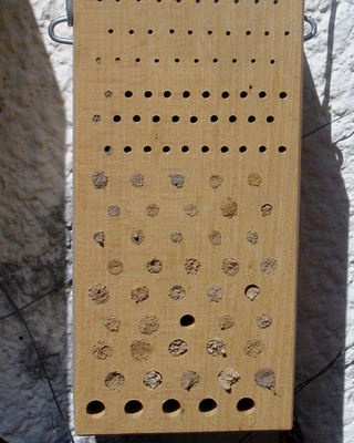 Insect Nesting Aid - Hardwood